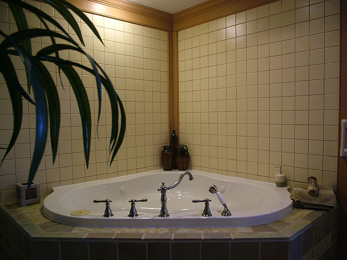 The Whirlpool Bath in the Serenity Suite of the Canna Country Inn